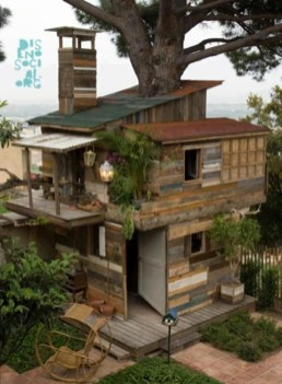 Spectacular Tree Ness House Design Ideas With Organic Architecture Inspired By Tree 09