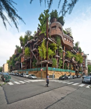 Spectacular Tree Ness House Design Ideas With Organic Architecture Inspired By Tree 17