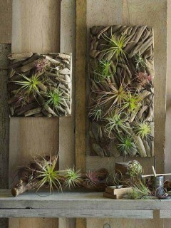 Splendid Driftwood Decor Ideas To Try Right Now 05