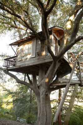 Sparkling Treehouse Design Ideas With Recycled Materials That You Should Have 35