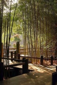 Best Japanese Garden Design Ideas That Looks So Stunning 19