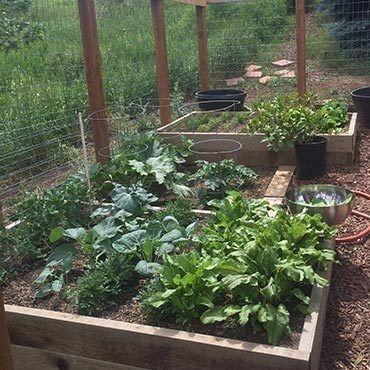 Rustic Vegetable Garden Design Ideas For Your Backyard Inspiration 04