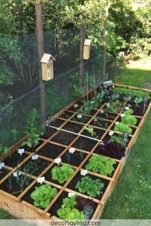 Rustic Vegetable Garden Design Ideas For Your Backyard Inspiration 08