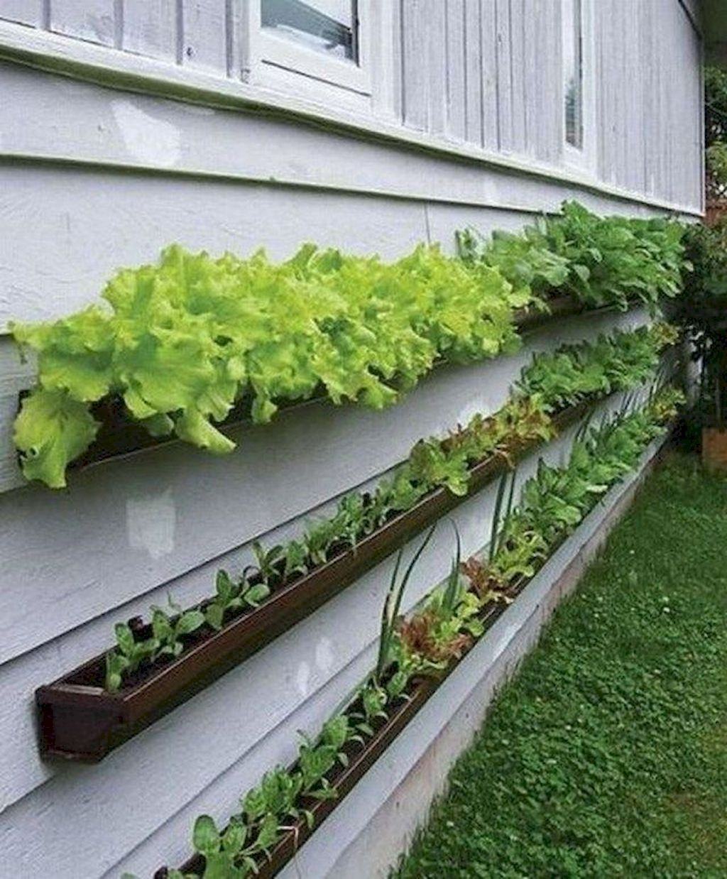 Rustic Vegetable Garden Design Ideas For Your Backyard Inspiration 26