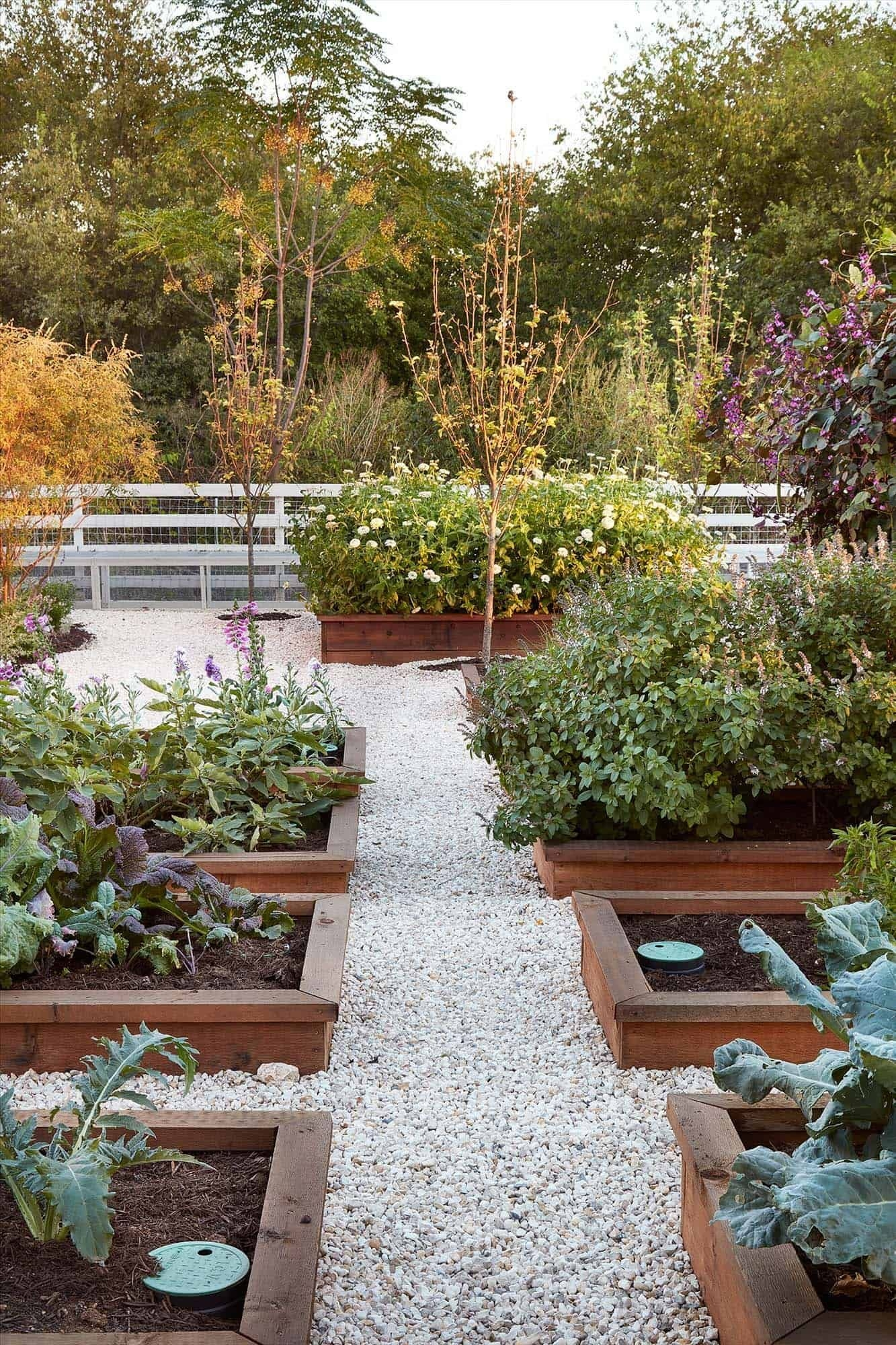 Rustic Vegetable Garden Design Ideas For Your Backyard Inspiration 34