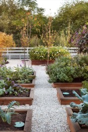 Rustic Vegetable Garden Design Ideas For Your Backyard Inspiration 34