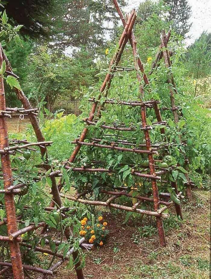 Rustic Vegetable Garden Design Ideas For Your Backyard Inspiration 38