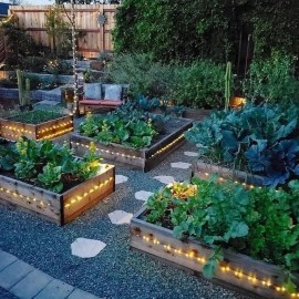Rustic Vegetable Garden Design Ideas For Your Backyard Inspiration 45