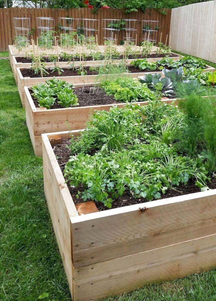 Rustic Vegetable Garden Design Ideas For Your Backyard Inspiration 46