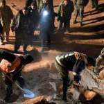 10,000 bodies buried in mass graves across Syria's Raqqah: Official
