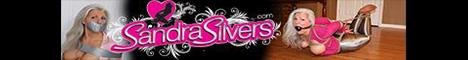 SandraSilvers website banner