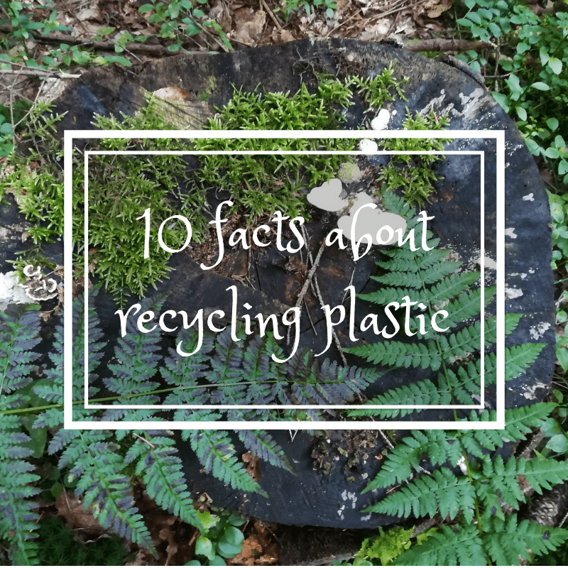 10 facts about recycling plastic • Gaia-s
