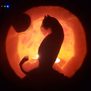 Jessica's Cat Pumpkin