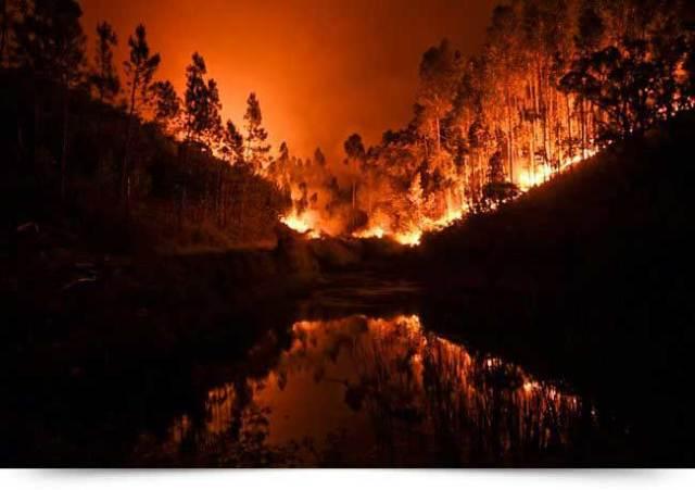 Resultado de imagem para Pesquisa revela a conexão entre mudanças climáticas, El Niño e a possibilidade de incêndios florestais mais extremos
