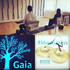 Mindfulness, yogaterapia hormonal, yoga, ioga, yoga vila mariana, hatha yoga, ioga vila mariana, vinyasa, ashtanga, kurunta