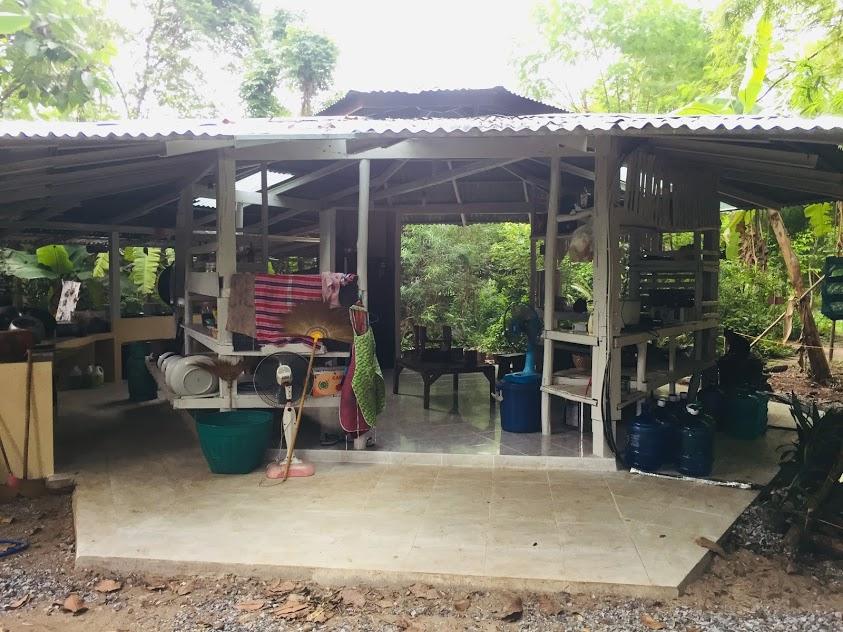 open community kitchen gaia ashram