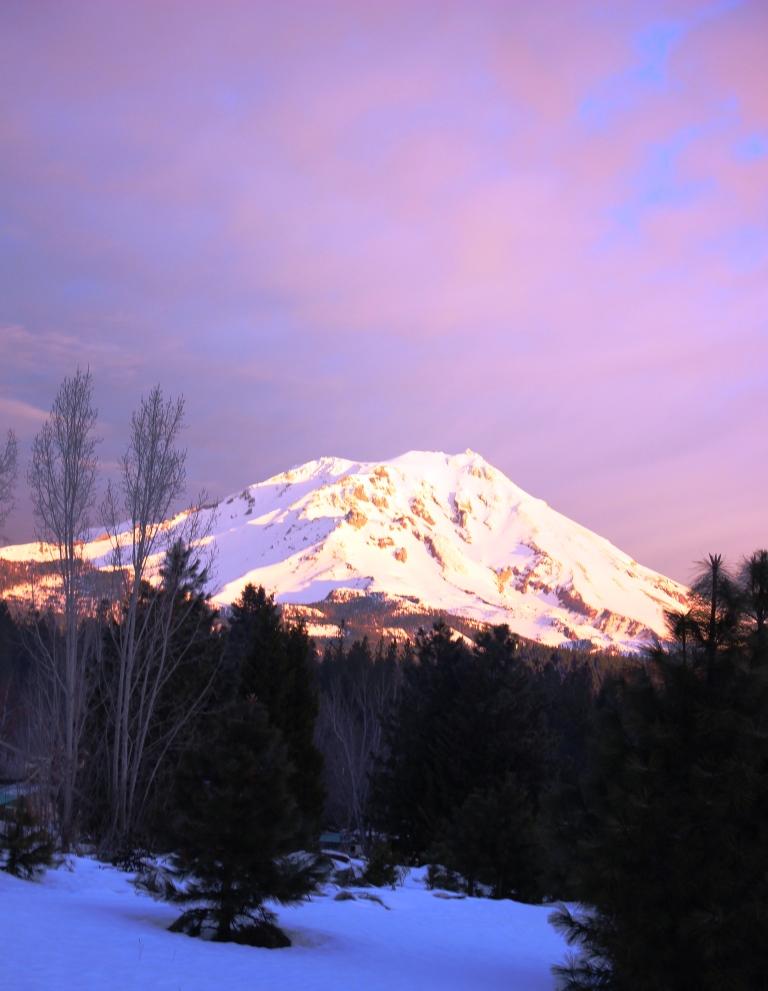 15 doc. Mt. Shasta, 1-17-2017 035