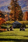 Outside in the Fall at Gaie Lea in Staunton, VA