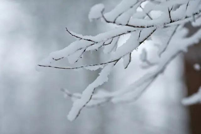 冬場に外壁塗装業者を探しておくのがオススメ!