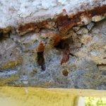 コンクリートの被り厚がないために鉄筋が錆びてしまっていた