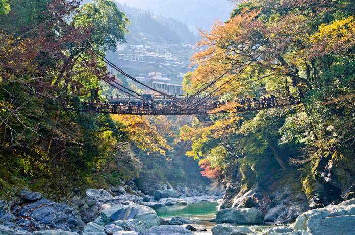Image result for mount scenery