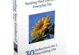 Your Guide to Everyday Joy
