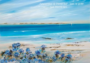 Agapanthus at Pentle Bay - Prints from £35