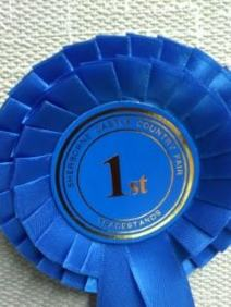 The blue ribbon was 1st Prize for Best Small Trade Stand Sherborne Castle Country Fair 2015