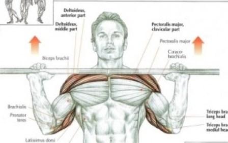 best exercise for upper body