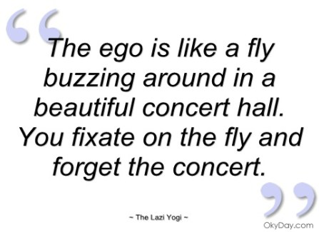 the-ego-is-like-fly-buzzing-around-in-the-lazi-yogi