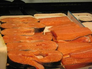 protein salmon weight gain