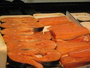 protein salmon weight gain