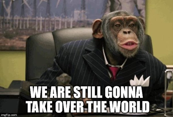business-chimp