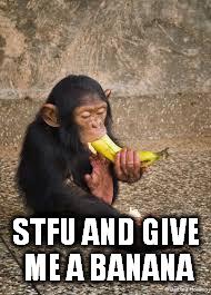 small-chimp-meme