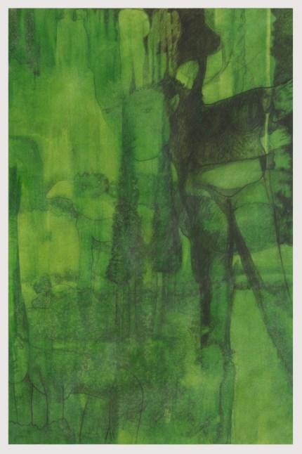 """"""" tra i colli di camaiore """" -2006, cm 50x75, oil on paper"""