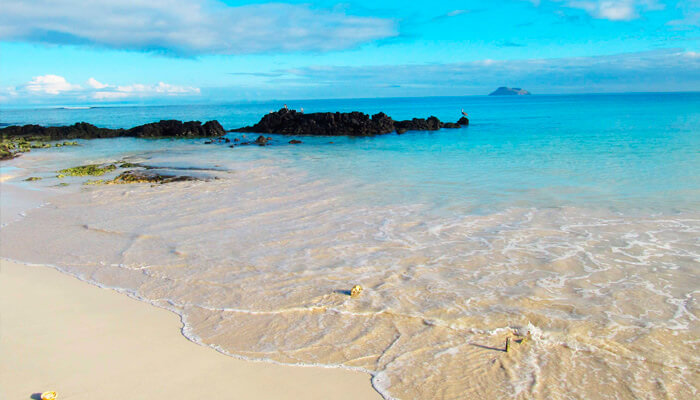 Galapagos Islands 8 Day Cruise Onboard Solaris Yacht Western Central Islands
