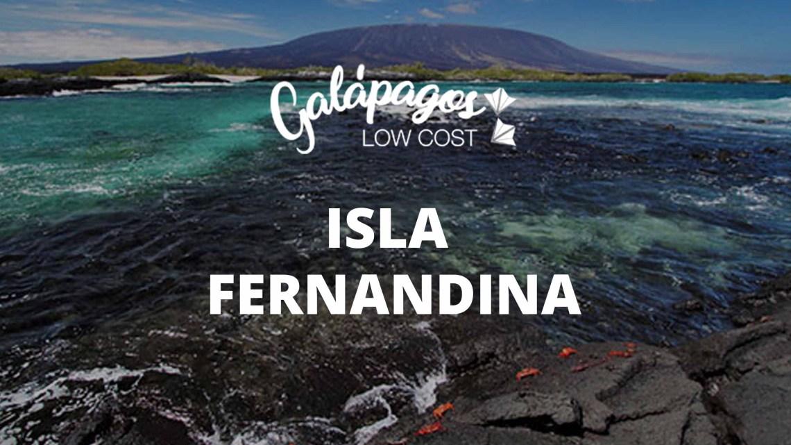 Isla Fernandina Galapagos