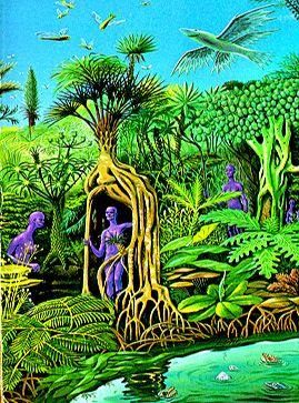 biodiversitate pe Shora