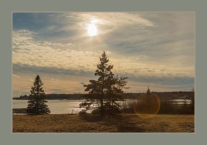 Mid-Maine Coast. Sunset image of cloud filled storm clouds over ocean with evergreen trees in the foreground.