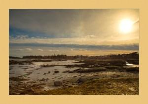 Yellow Border on Sunset Mud Flats in Mid-Coast Maine Bay.