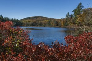 Red colored bushes in foreground surround opening in blue pond before fall colored hilltop with blue sky above it all. Round Pond, Rome, Maine..