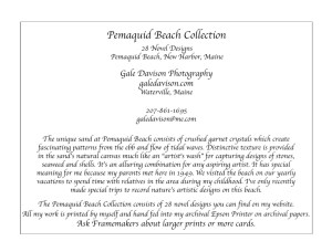 Written description of Pemaquid Beach Collection of 27 images.