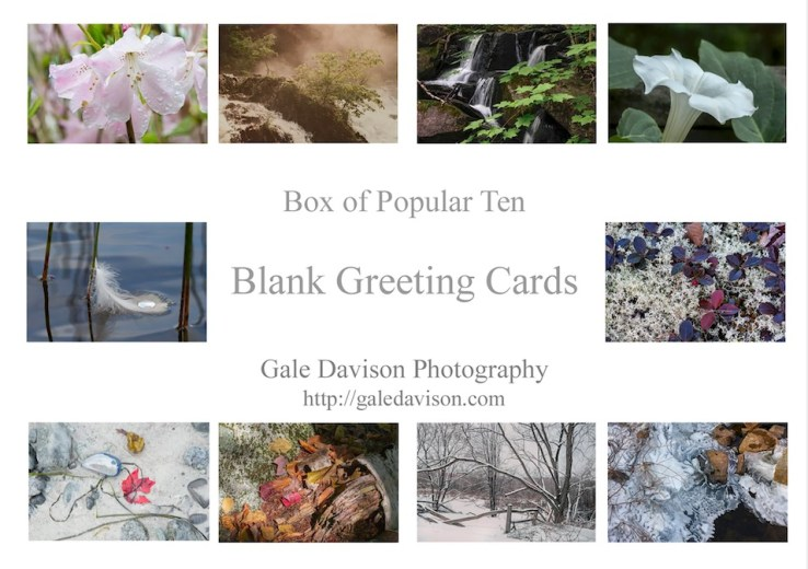Picture of Insert of Ten Popular Images sold as Bundle of Ten inside gift box or without gift box.