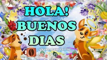 HOLA BUENOS DIAS