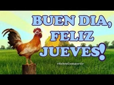 Frases y Video Mensaje BUENOS DIAS FELIZ JUEVES!