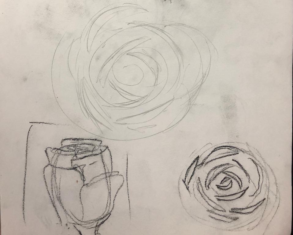 Comment dessiner et peindre une rose réaliste | L\'art de la Peinture ...