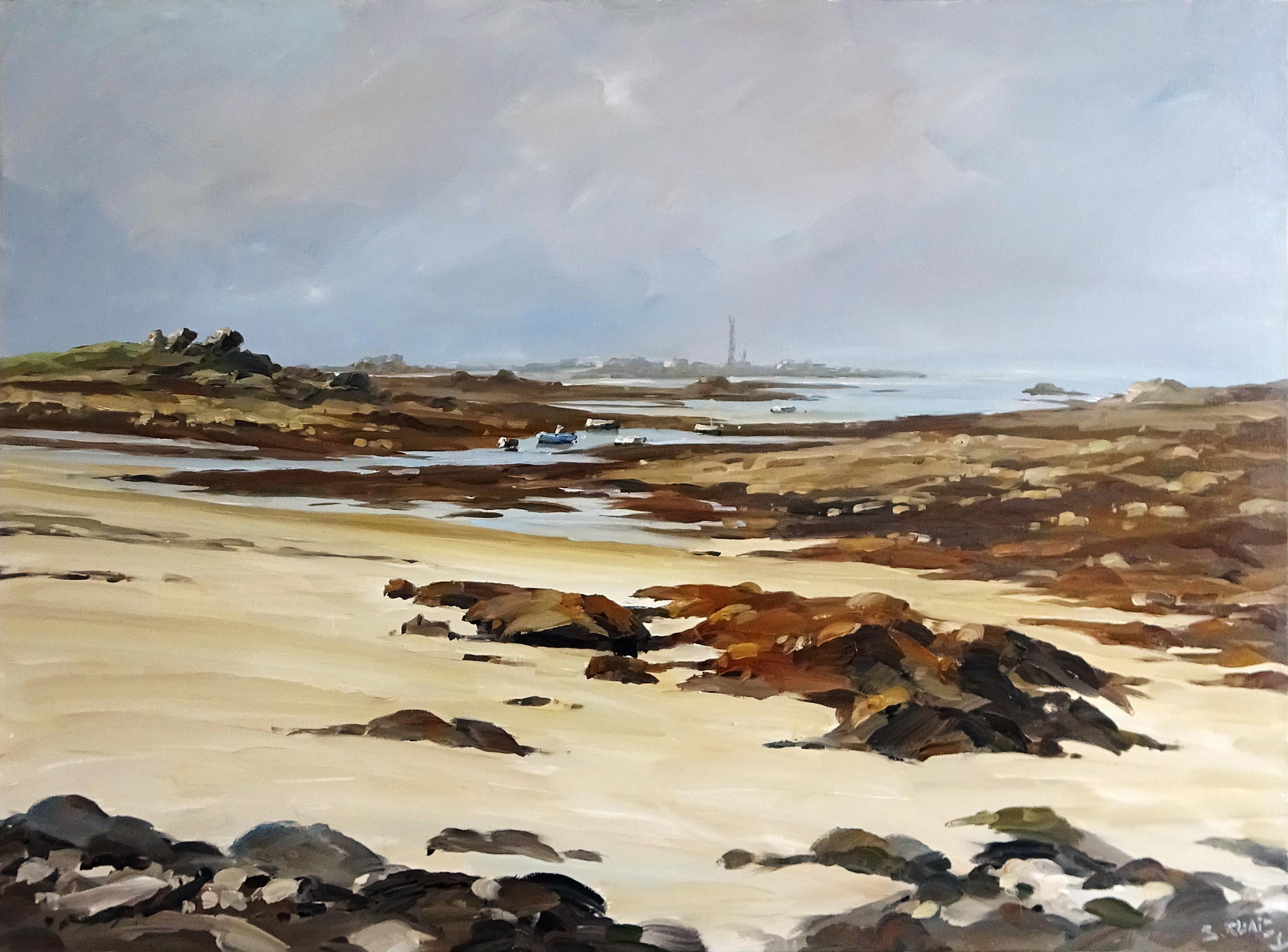 Stéphane RUAIS - n°39 Kerledut à marée basse 40P 100X73cm - Huile sur toile