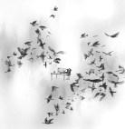 La sieste oiseaux