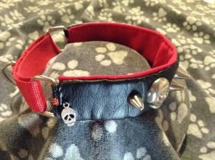 Collares de seguridad para perros, collares martingale para galgos, adopción de galgos, Galicia