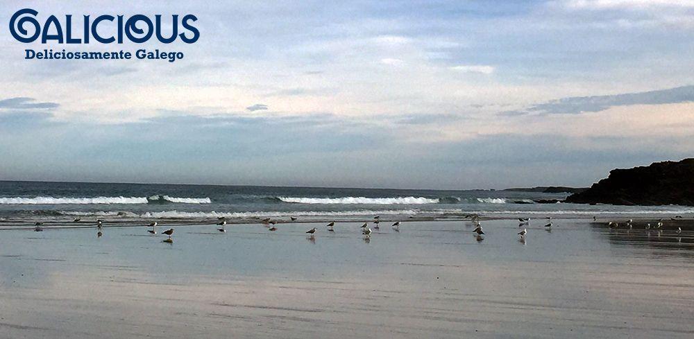 Playa de Barreiros ( Lugo ) Galicious